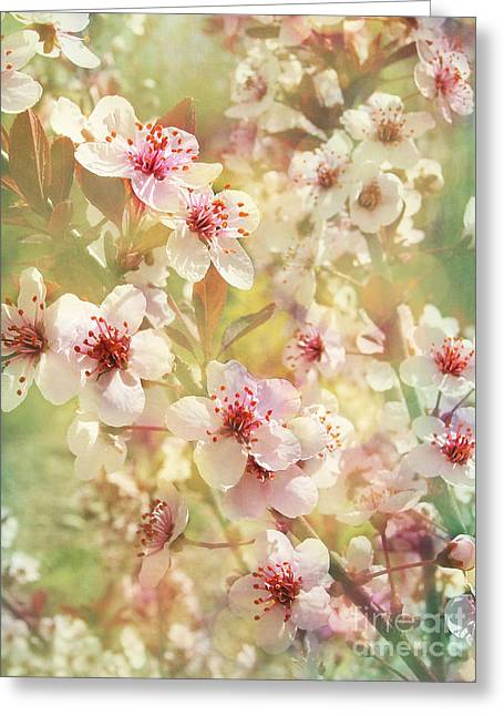 Sand Cherry Flourish Greeting Card