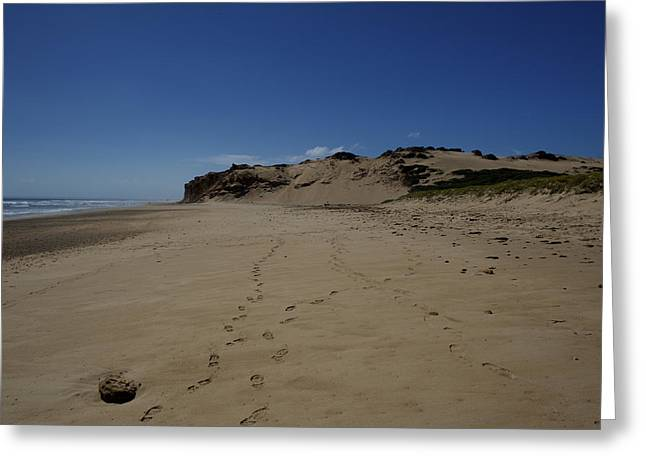 Sand Dune At Darby River Greeting Card