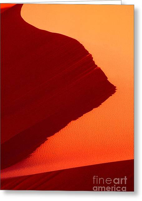 Greeting Card featuring the photograph Sand Dune Curves Coral Pink Sand Dunes Arizona by Dave Welling