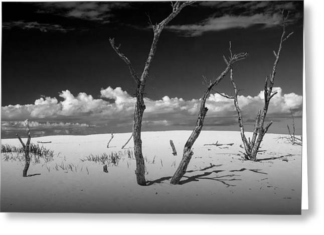 Sand Dune Meets The Sky Greeting Card by Randall Nyhof