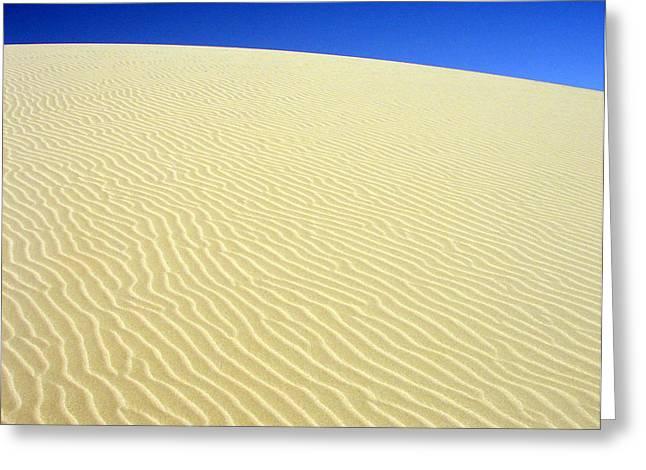 Greeting Card featuring the photograph Sand Dune by Ramona Johnston
