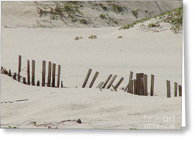 Sand Dunes At Gulf Shores Greeting Card