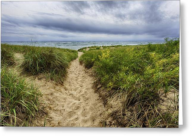 Sand Dunes Beach Path Greeting Card by Sebastian Musial