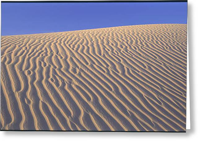 Sand Dunes Death Valley National Park Greeting Card by Panoramic Images