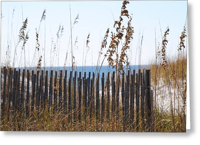 Greeting Card featuring the photograph Sand Dunes by Michele Kaiser