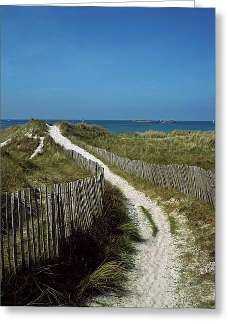 Sand Dunes On Beach, Abers Coast Greeting Card