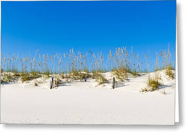 Sand Dunes On Gulf Of Mexico, Orange Greeting Card by Panoramic Images