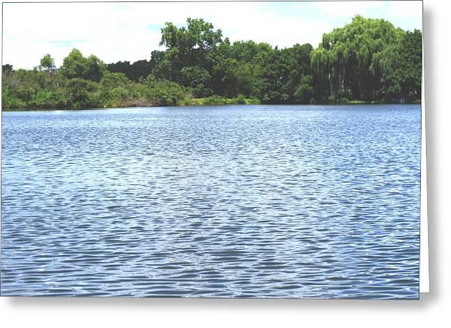 Sand Lake Greeting Card