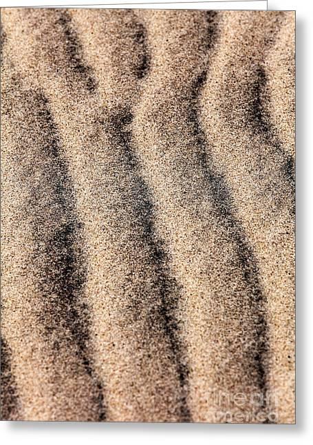 Sand Patterns IIi Greeting Card