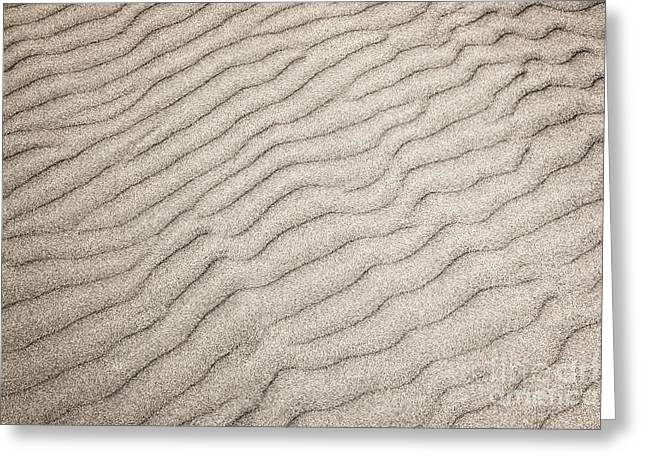 Sand Ripples Natural Abstract Greeting Card