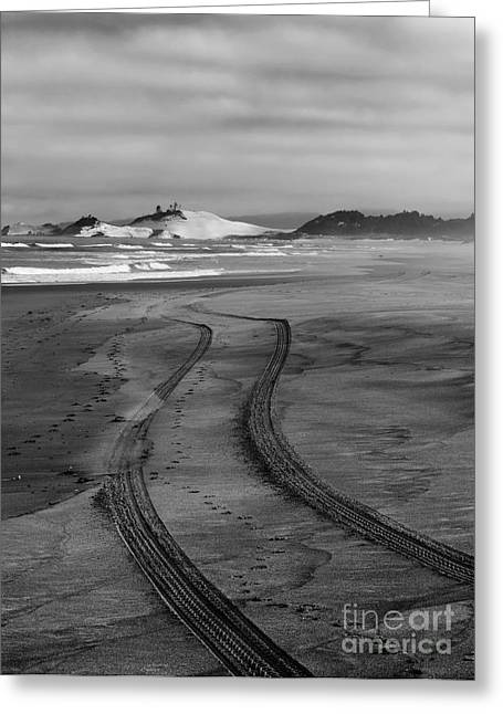Sand Tracks Greeting Card