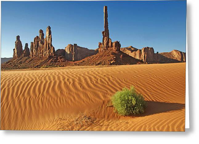 Greeting Card featuring the photograph Sand Waves by Paul Miller