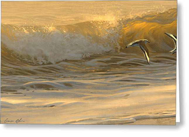 Sanderlings Greeting Card
