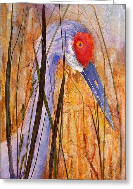 Sandhill Crane 2 Greeting Card by Cynthia Roudebush