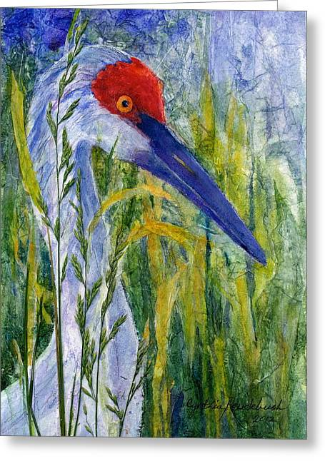 Sandhill Crane 3 Riverview Fl Greeting Card by Cynthia Roudebush