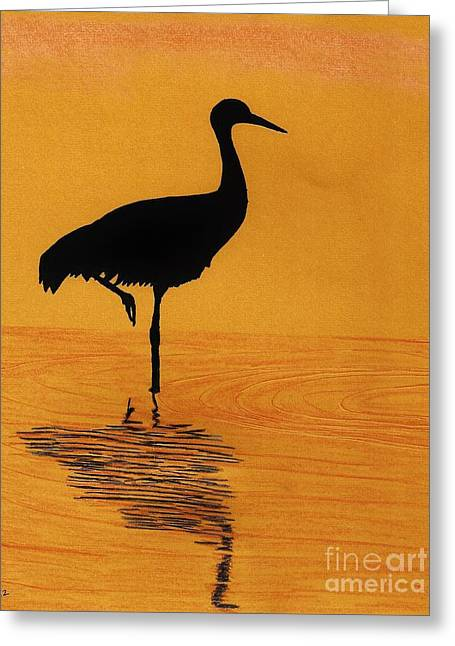 Sandhill - Crane - Sunset Greeting Card by D Hackett