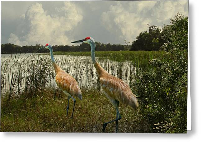 Sandhill Cranes Courting Greeting Card