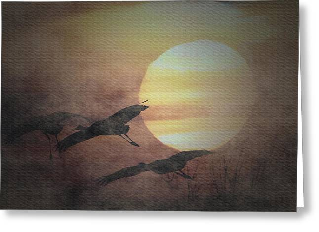 Sandhill Cranes In The Mist Greeting Card by Dennis Buckman