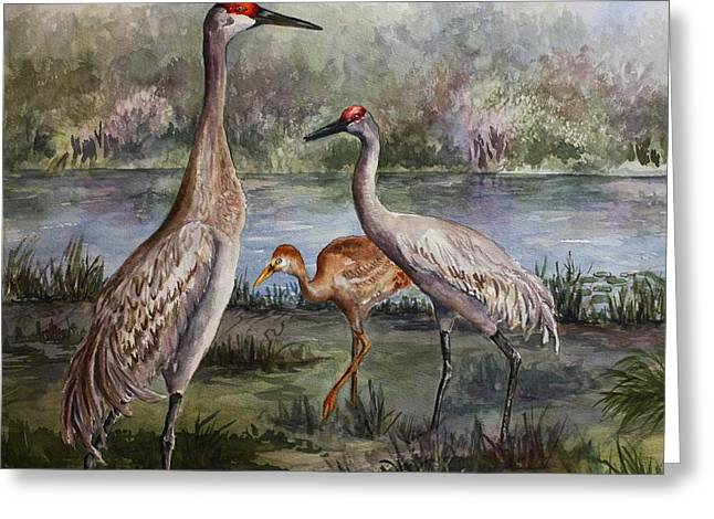 Sandhill Cranes On Alert Greeting Card