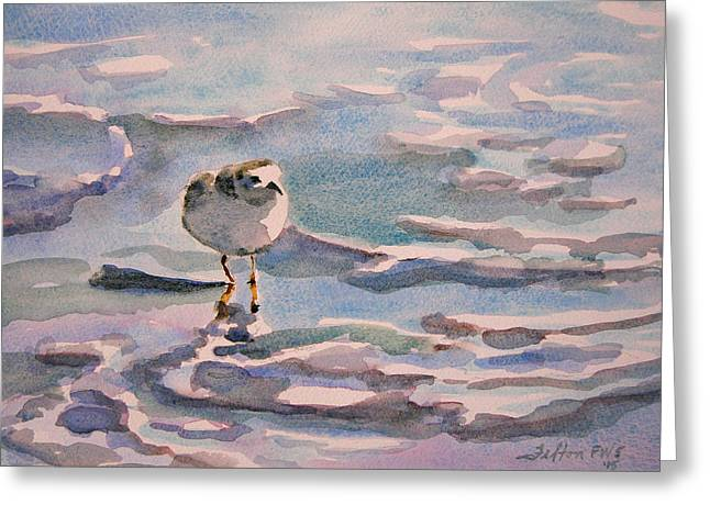 Sandpiper And Seafoam 3-8-15 Greeting Card