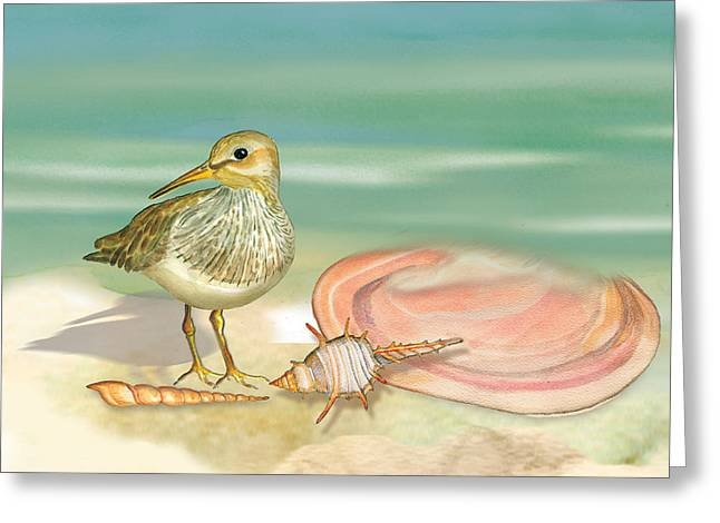 Sandpiper On Beach Greeting Card