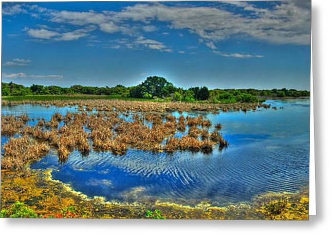 Sandpiper Pond Panorama Greeting Card by Ed Roberts