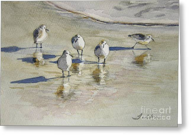 Sandpipers 2 Watercolor 5-13-12 Julianne Felton Greeting Card