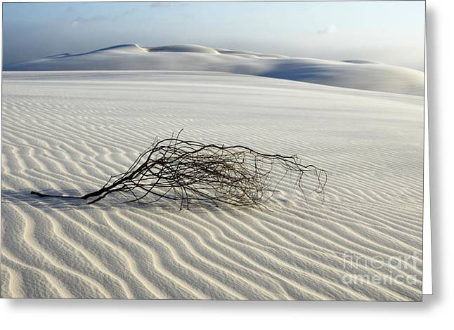 Sands Of Time Brazil Greeting Card by Bob Christopher