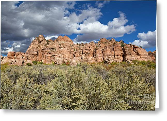 Sandstone And Clouds In Zion Natl Park Utah Greeting Card by Yva Momatiuk John Eastcott