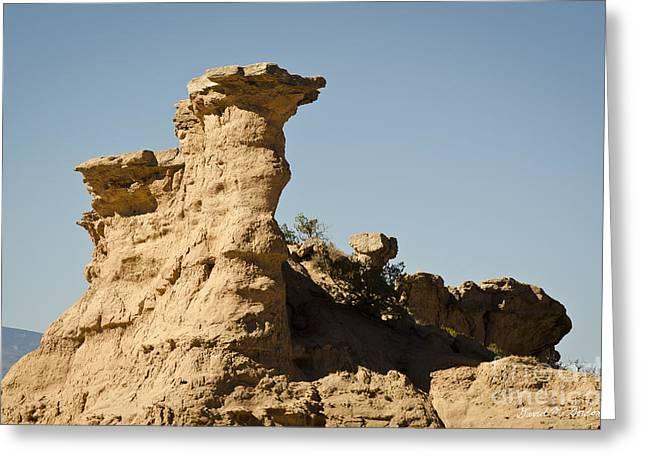 Sandstone Rock Formation  Greeting Card by David Gordon