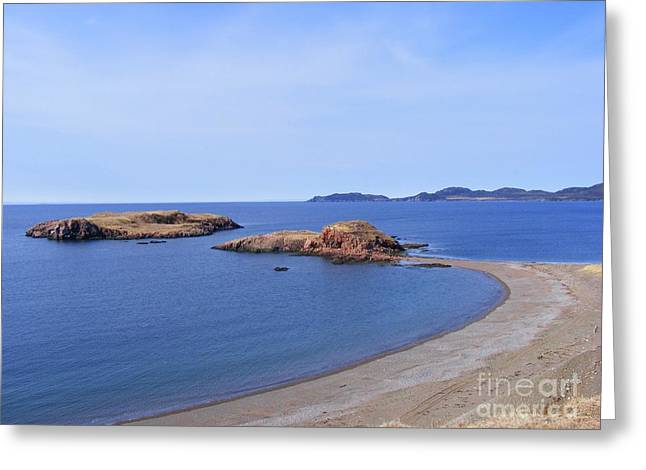 Sandy Beach - Little Island - Coastline - Seascape  Greeting Card by Barbara Griffin