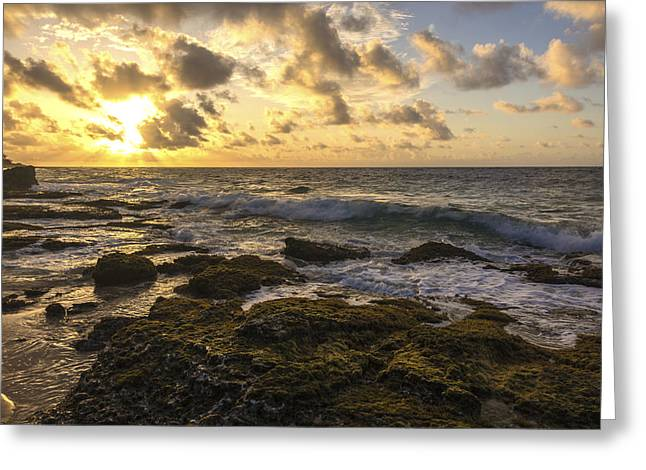 Sandy Beach Sunrise 11 - Oahu Hawaii Greeting Card by Brian Harig