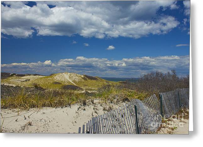 Sandy Neck Beach Greeting Card by Amazing Jules