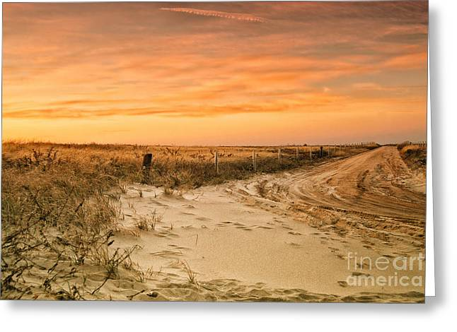Sandy Road Leading To The Beach Greeting Card