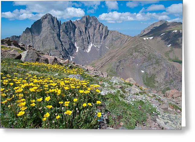 Sangre De Cristos Crestone Peak And Wildflowers Greeting Card
