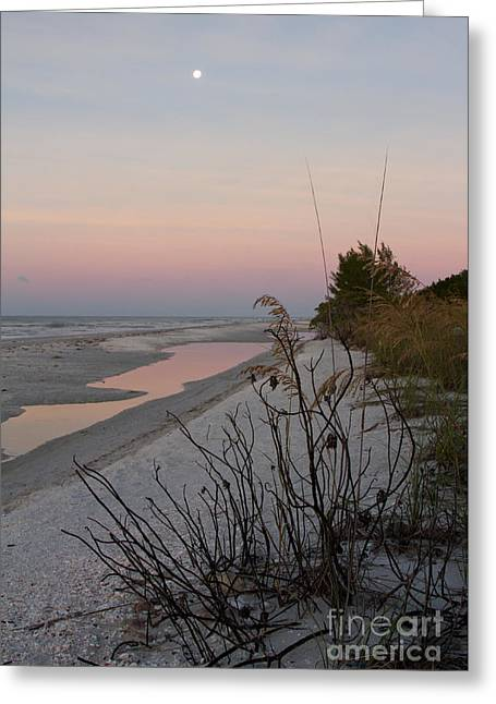 Sanibel Moonrise Greeting Card