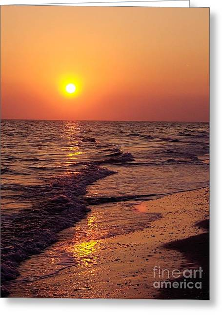 Greeting Card featuring the photograph Sanibel Sunset by D Hackett
