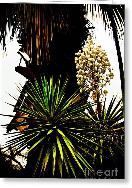 Greeting Card featuring the photograph Sans Titre II by Gerlinde Keating - Galleria GK Keating Associates Inc