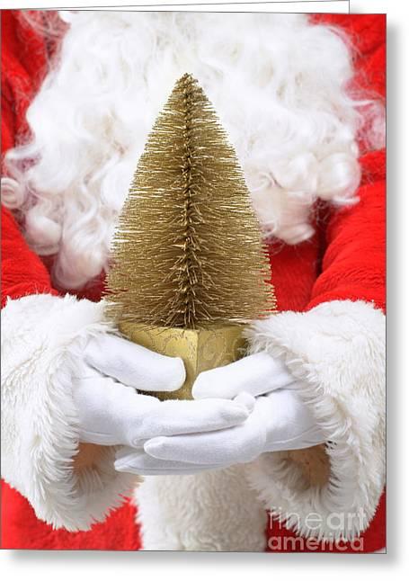 Santa Claus Holding Christmas Tree Greeting Card