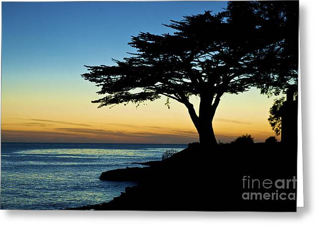 Santa Cruz California 3 Greeting Card