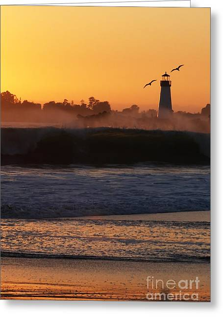 Santa Cruz Harbor Lighthouse With Birds Greeting Card