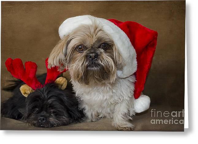 Santa I Am Tired  Greeting Card by Nicole Markmann Nelson