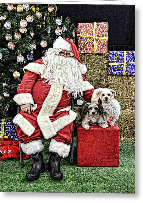 Santa Paws  Greeting Card by Helen Akerstrom Photography