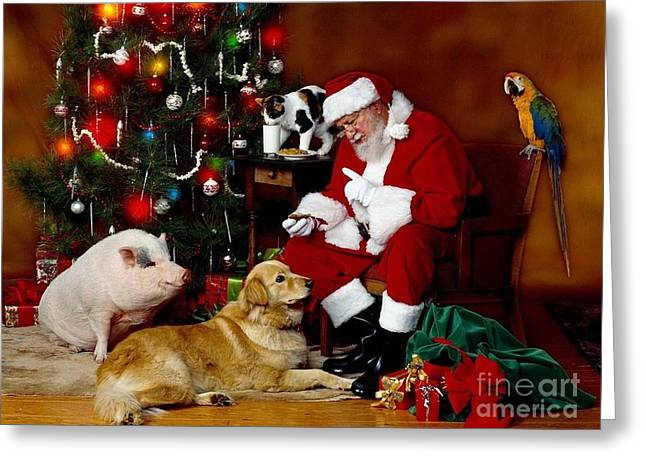 Santa Reading Lists With His Parrot-dog And Pig Greeting Card by Doc Braham
