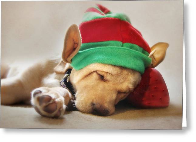 Santa's Helper Greeting Card by Lori Deiter