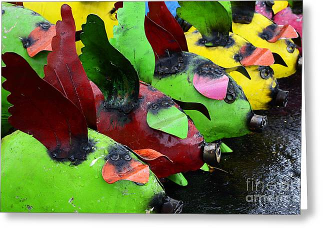 Sante Fe Color When Pigs Fly Greeting Card by Bob Christopher