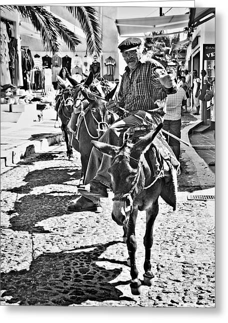 Santorini Donkey Train. Greeting Card by Meirion Matthias