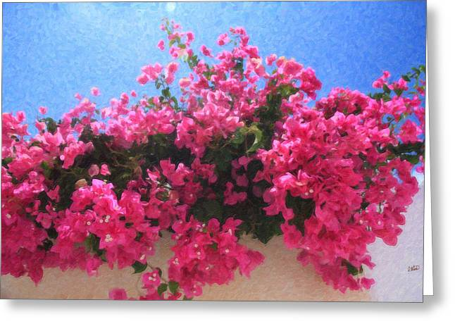 Santorini Flowers Grk1113 Greeting Card