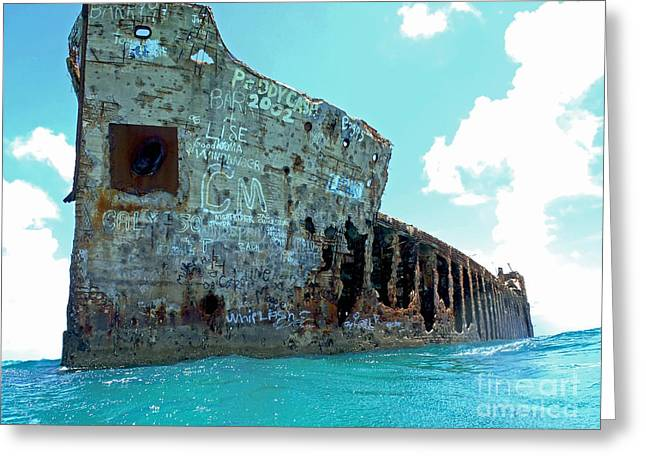 Sapona Ship Wreck Greeting Card by Carey Chen