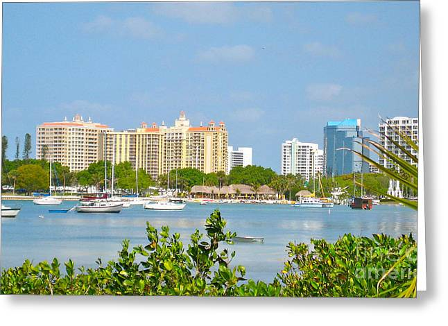 Sarasota Skyline Greeting Card by Joan McArthur